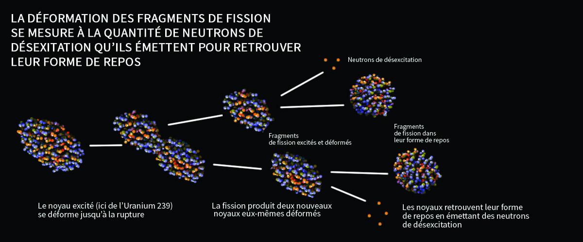 Fission de l'Uranium 239
